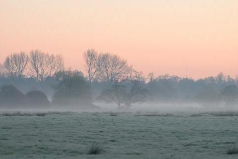Mist over Hampshire