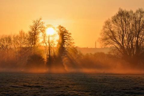 Misty Broadlands dawn