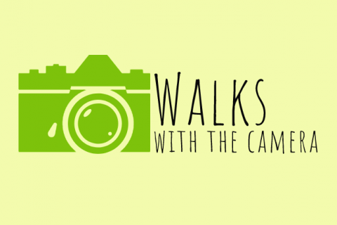Walks with the Camera logo
